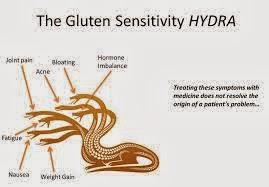gluten_hydra